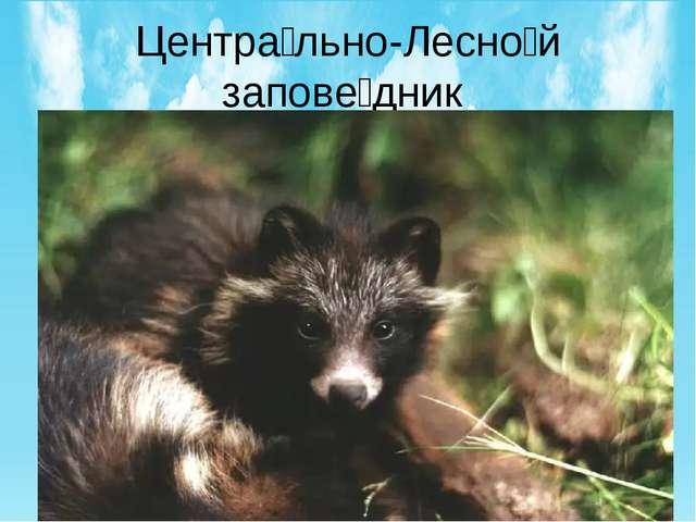 Центра́льно-Лесно́й запове́дник государственный природный заповедник, располо...