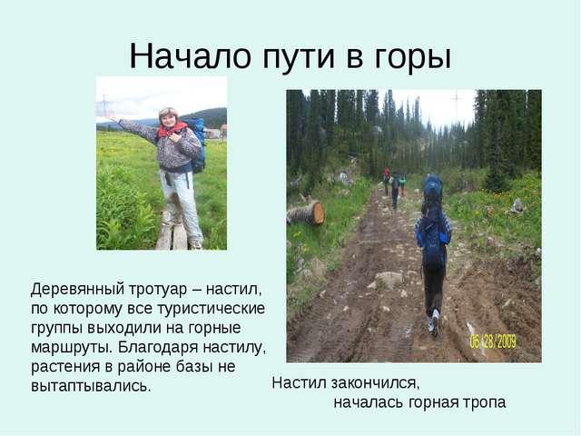 Начало пути в горы Деревянный тротуар – настил, по которому все туристические...