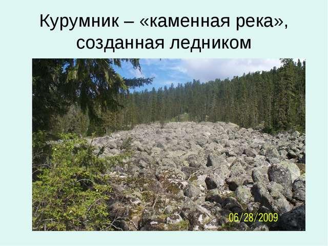 Курумник – «каменная река», созданная ледником