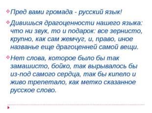 Пред вами громада - русский язык! Дивишься драгоценности нашего языка: что ни