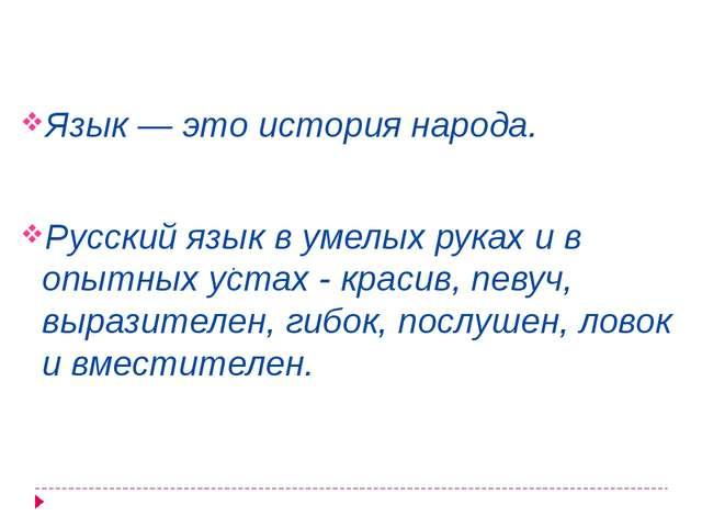 Язык — это история народа. Русский язык в умелых руках и в опытных устах - к...