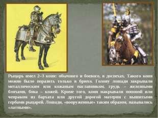 Рыцарь имел 2–3 коня: обычного и боевого, в доспехах. Такого коня можно было