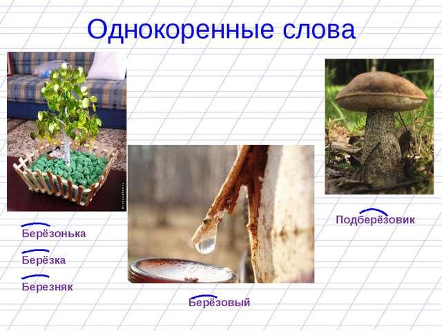 Однокоренные слова Берёзонька Берёзка Березняк Берёзовый Подберёзовик