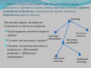 Дерево, которое показывает, как объекты одного класса разделить на группы по