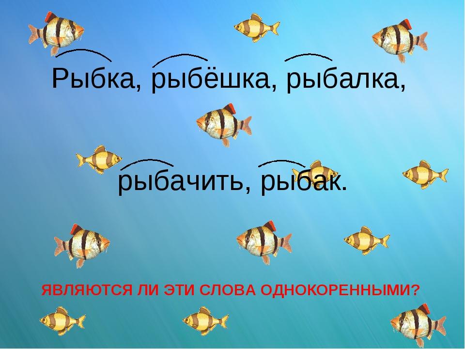 Рыбка, рыбёшка, рыбалка, рыбачить, рыбак. ЯВЛЯЮТСЯ ЛИ ЭТИ СЛОВА ОДНОКОРЕННЫМИ?