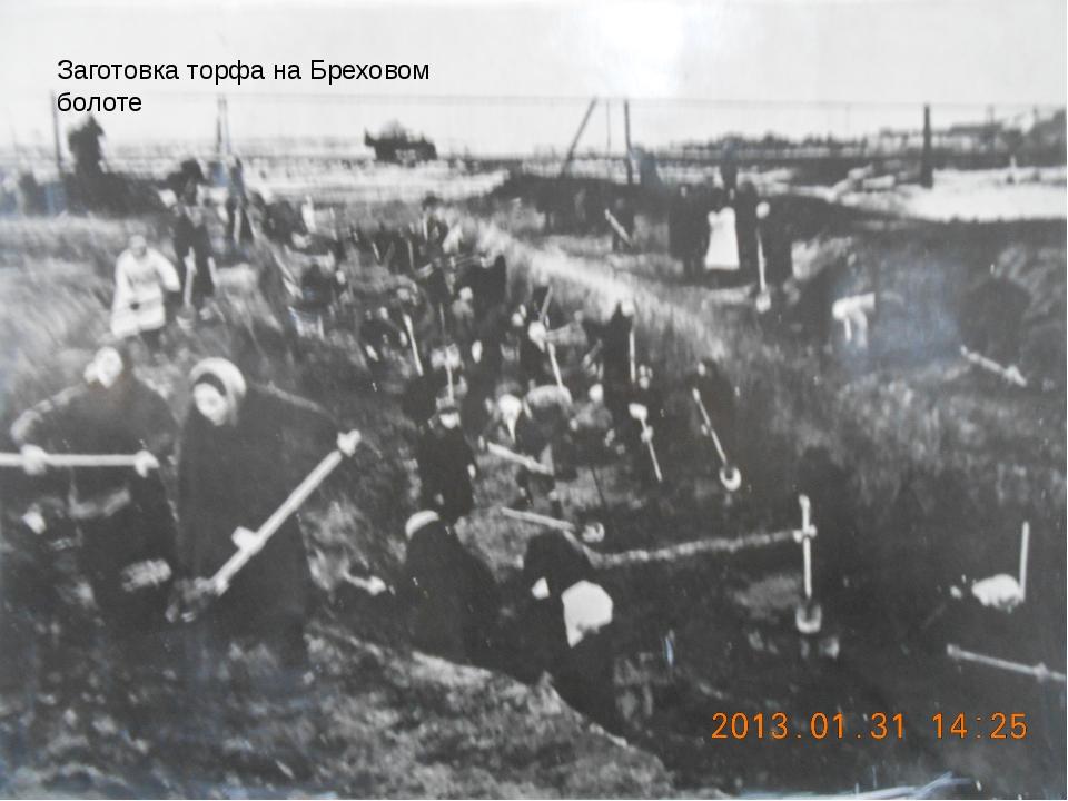 Заготовка торфа на Бреховом болоте