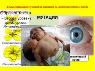 Полиплоидия Уродства Бессмысленный генетический «шум» 2.Классификация мутаций