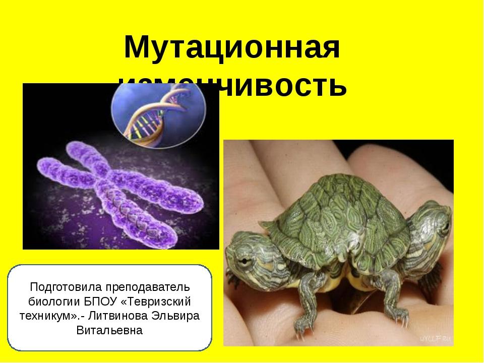 Мутационная изменчивость Подготовила преподаватель биологии БПОУ «Тевризский...