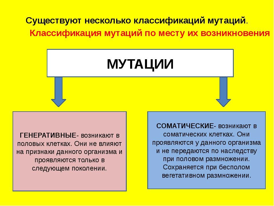Существуют несколько классификаций мутаций. Классификация мутаций по мест...