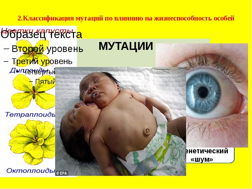 Полиплоидия Уродства Бессмысленный генетический «шум» 2.Классификация мутаций...