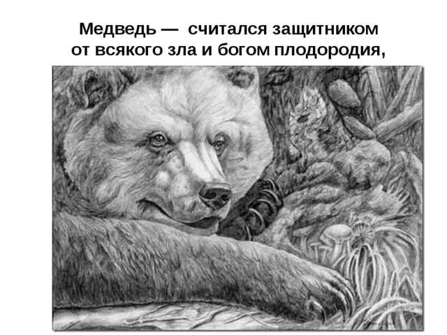 Медведь — считался защитником от всякого зла и богом плодородия,