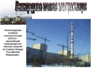 Ленинградская атомная электростанция (ЛАЭС) - крупнейший производитель электр