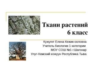 Ткани растений 6 класс Кужугет Елена Кежик-ооловна Учитель биологии 1 категор