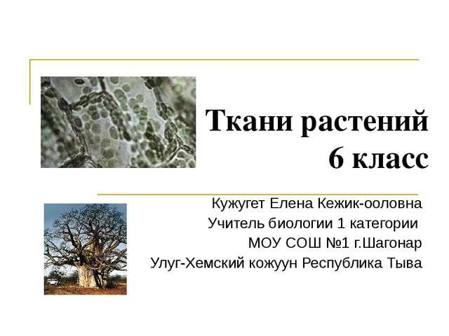Ткани растений 6 класс Кужугет Елена Кежик-ооловна Учитель биологии 1 категор...