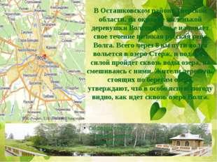 В Осташковском районе Тверской области, на окраине маленькой деревушки Волгов