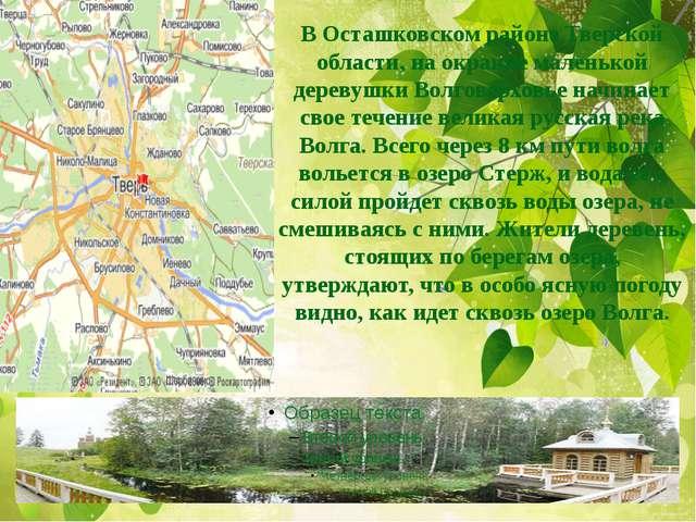 В Осташковском районе Тверской области, на окраине маленькой деревушки Волгов...