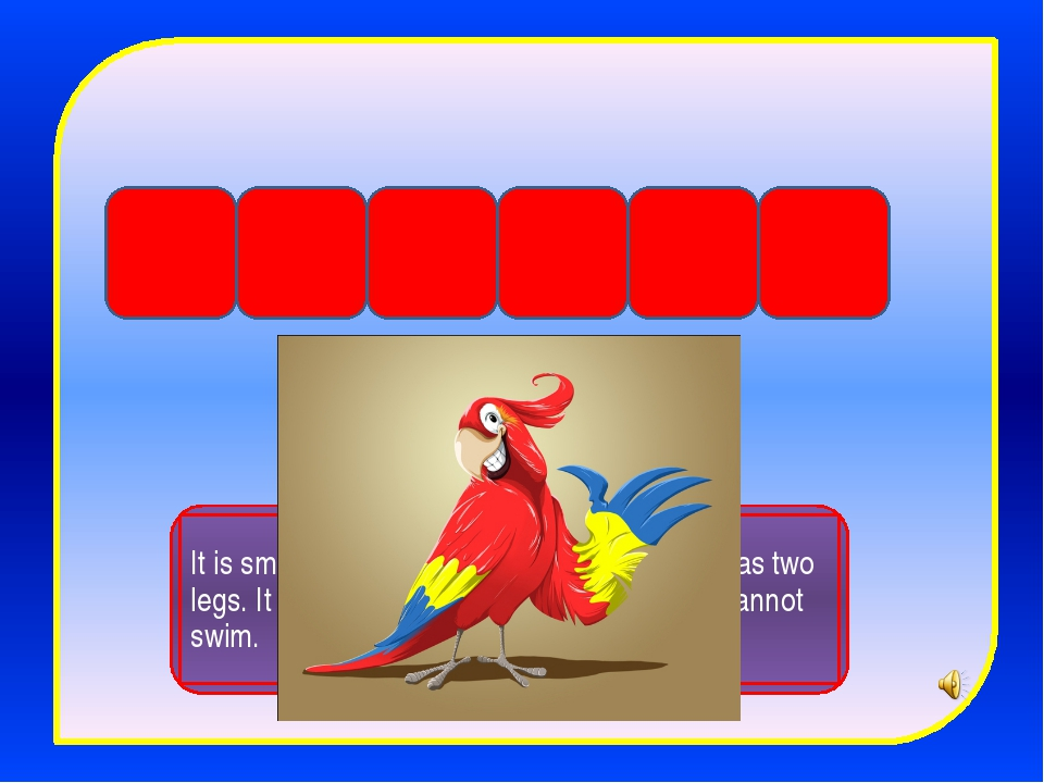 p a r r o t It is small and funny. It lives in the house. It has two legs. It...