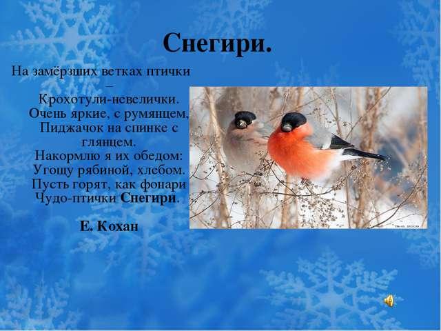 Снегири. На замёрзших ветках птички – Крохотули-невелички. Очень яркие, с рум...