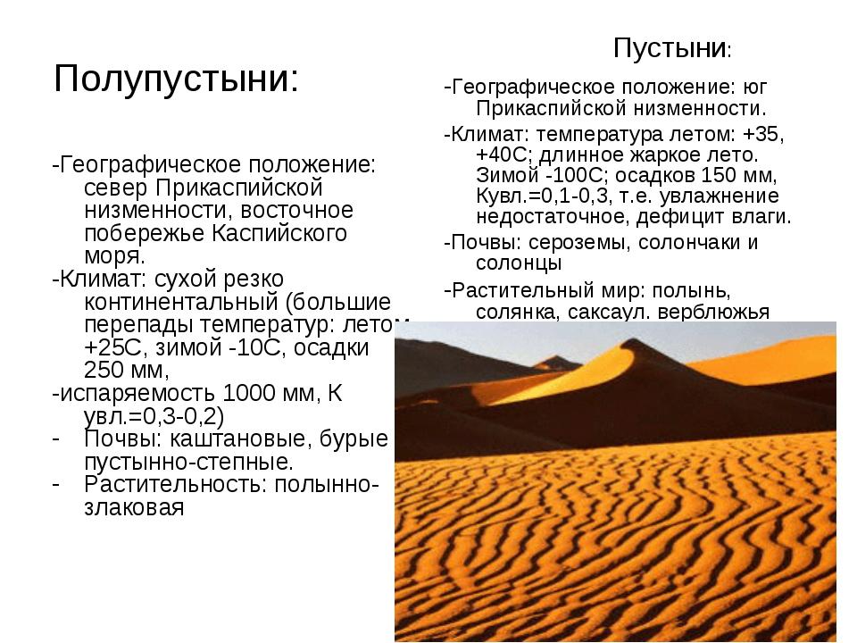 Картинка полыни в пустыне каждый