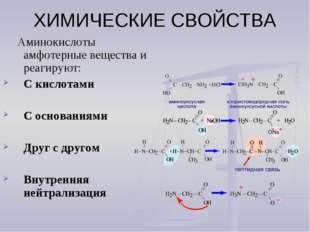 ХИМИЧЕСКИЕ СВОЙСТВА Аминокислоты амфотерные вещества и реагируют: С кислотами