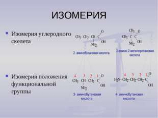 ИЗОМЕРИЯ Изомерия углеродного скелета Изомерия положения функциональной группы