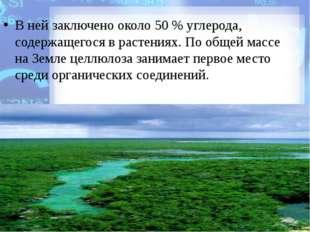 В ней заключено около 50% углерода, содержащегося в растениях. По общей мас
