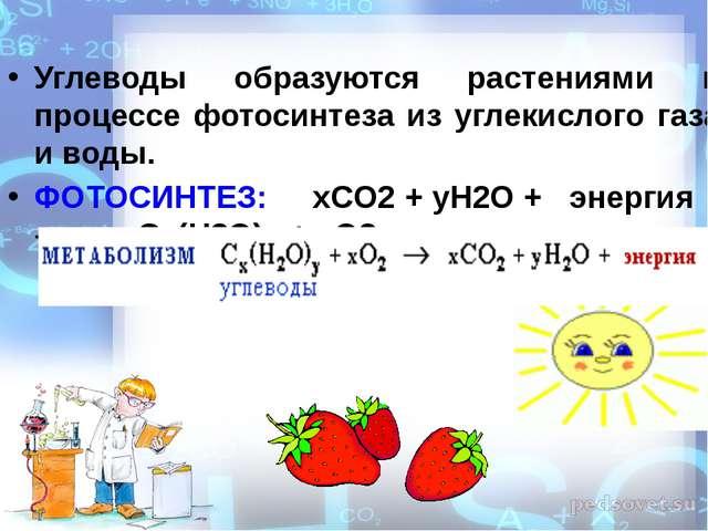 Углеводы образуются растениями в процессе фотосинтеза из углекислого газа и...