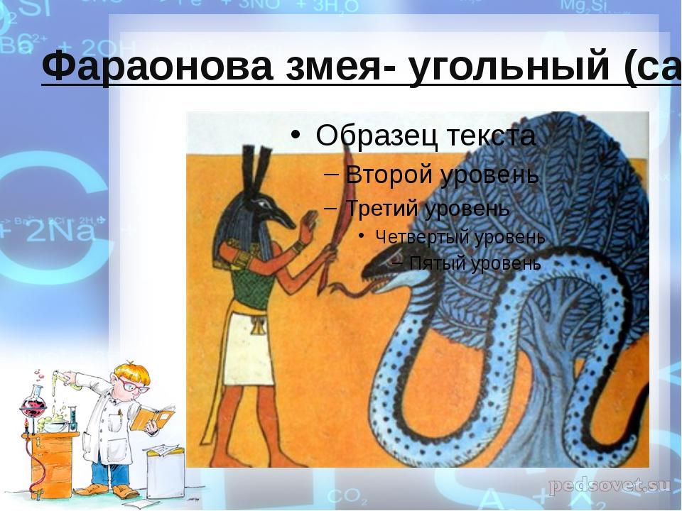 Фараонова змея- угольный (сахарный) удав