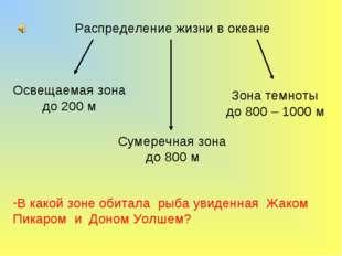 Распределение жизни в океане Освещаемая зона до 200 м Сумеречная зона до 800