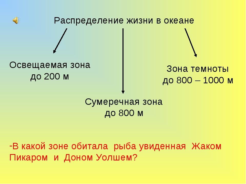 Распределение жизни в океане Освещаемая зона до 200 м Сумеречная зона до 800...