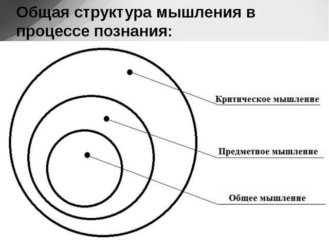 Общая структура мышления в процессе познания: