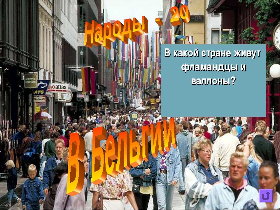 В какой стране живут фламандцы и валлоны?