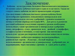 Заключение.  Кабачок - культура очень большого биологического потенциала. Не