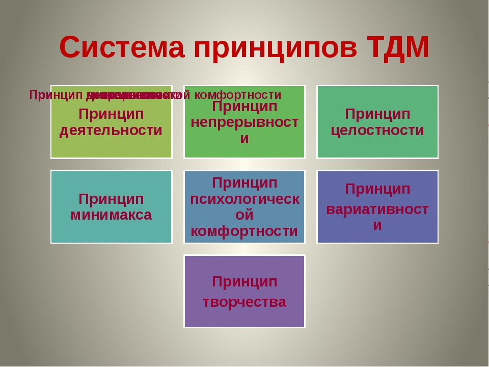 Система принципов ТДМ