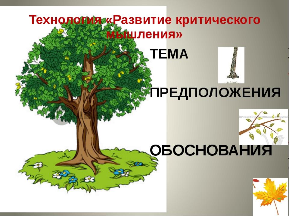 Технология «Развитие критического мышления» ТЕМА ПРЕДПОЛОЖЕНИЯ ОБОСНОВАНИЯ