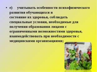 е) учитывать особенности психофизического развития обучающихся и состояни