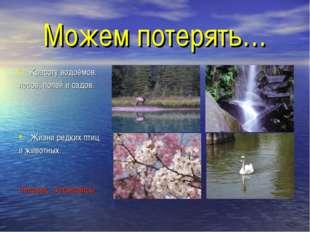 Можем потерять… Красоту водоёмов. лесов, полей и садов. Жизни редких птиц и ж