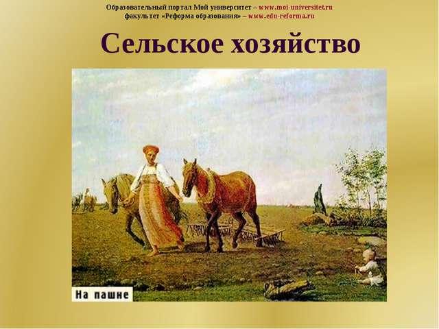 Сельское хозяйство Образовательный портал Мой университет – www.moi-universit...