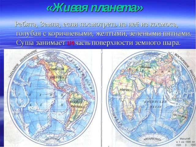 «Живая планета» Ребята, Земля, если посмотреть на неё из космоса, голубая с к...