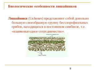 Биологические особенности лишайников Лишайники (Lichenes) представляют собой