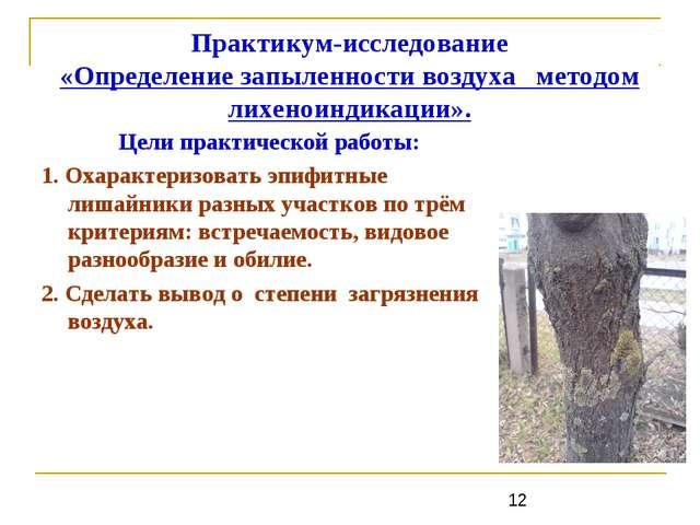 Практикум-исследование «Определение запыленности воздуха методом лихеноиндика...