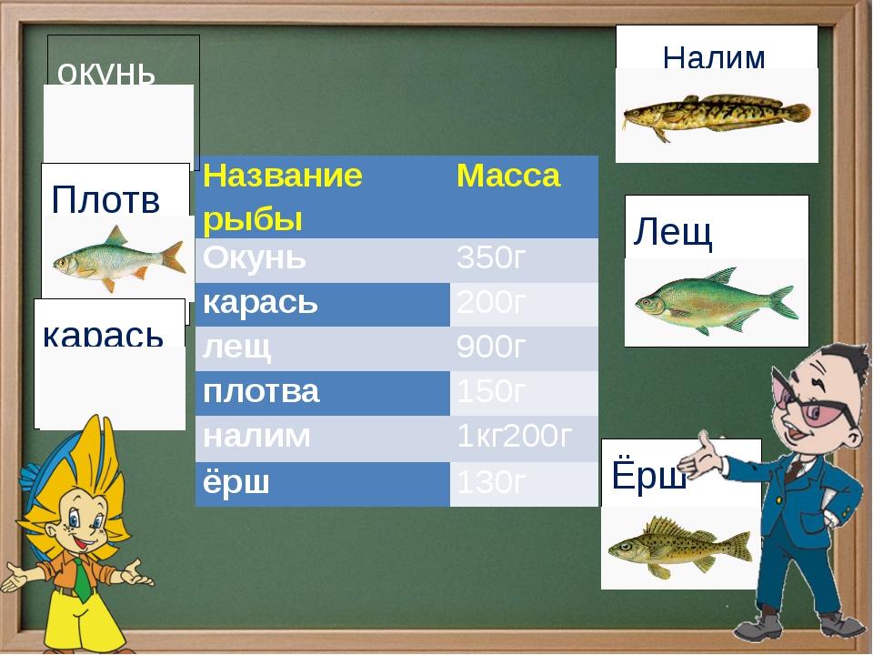 Налим окунь  Лещ Плотва карась Ёрш Название рыбы Масса Окунь 350г карась 20...