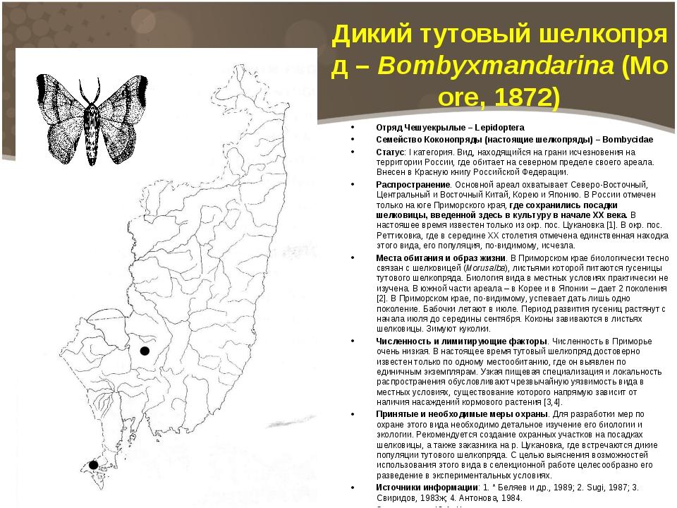 Дикийтутовыйшелкопряд–Bombyxmandarina(Moore, 1872) текст слайда Отряд Че...