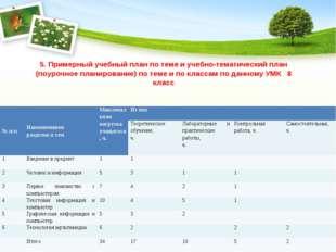 5. Примерный учебный план по теме и учебно-тематический план (поурочное плани