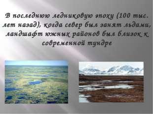 В последнюю ледниковую эпоху (100 тыс. лет назад), когда север был занят льда
