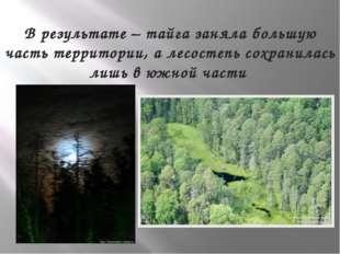 В результате – тайга заняла большую часть территории, а лесостепь сохранилась