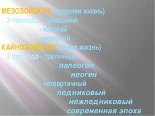 МЕЗОЗОЙСКАЯ (средняя жизнь) 3 периода - триасовый - юрский - меловой КАЙНОЗОЙ