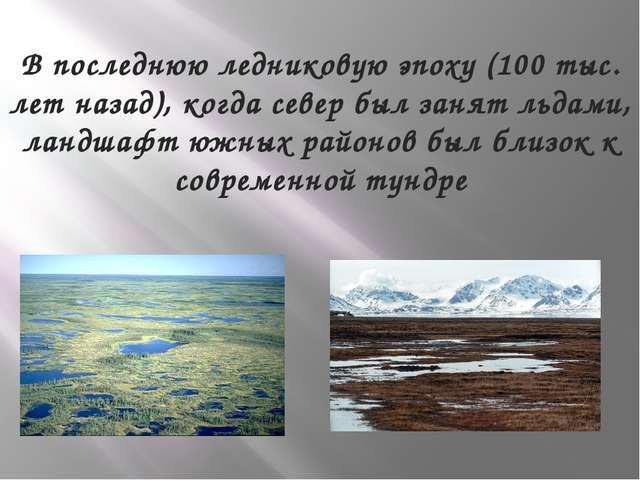 В последнюю ледниковую эпоху (100 тыс. лет назад), когда север был занят льда...