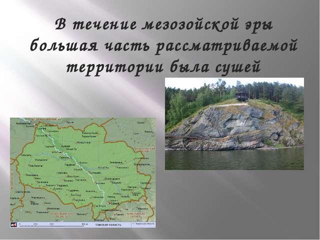 В течение мезозойской эры большая часть рассматриваемой территории была сушей