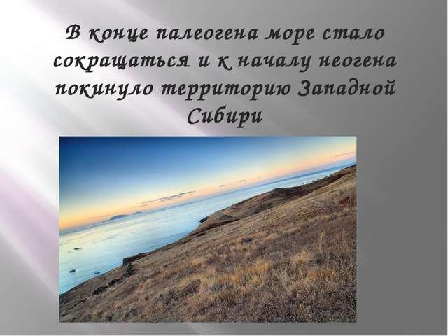 В конце палеогена море стало сокращаться и к началу неогена покинуло территор...